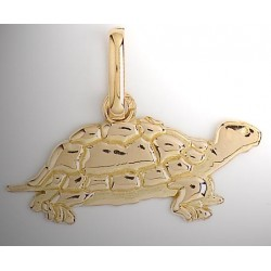 Tortue or